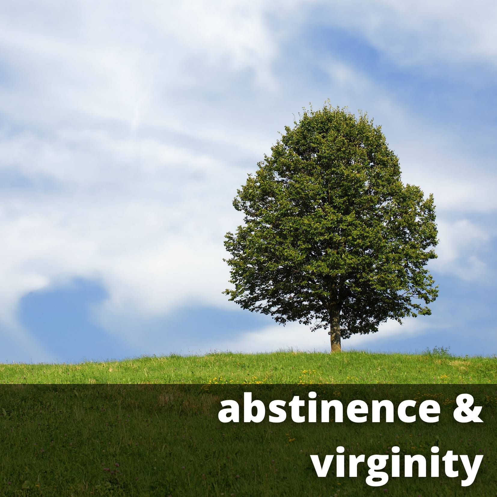 abstinence and virginity